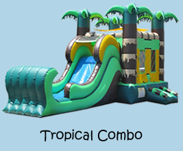 Inflatable Bounce House Slide Combo